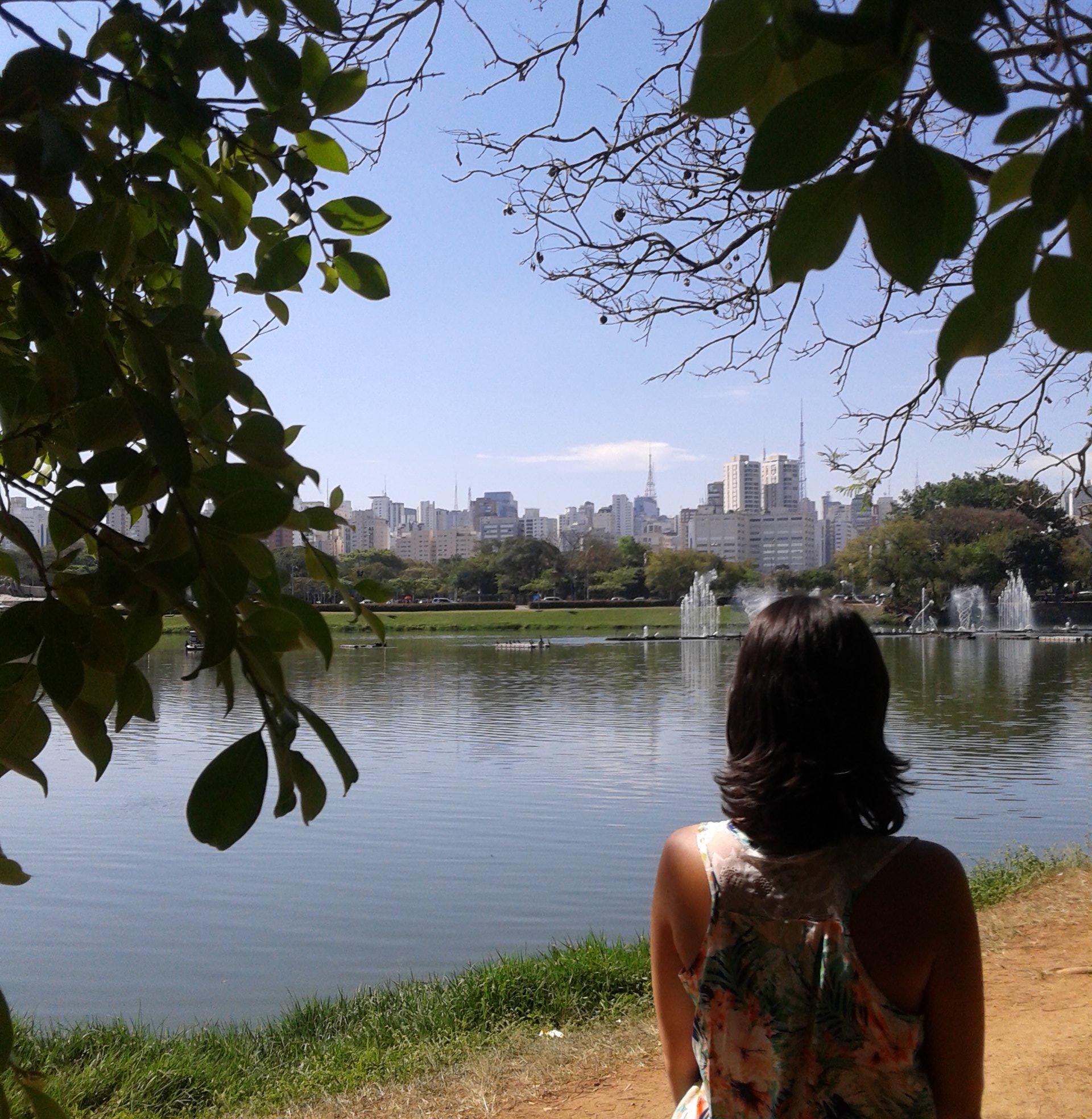 ibirapuera-melhor-parque-do-mundo-3
