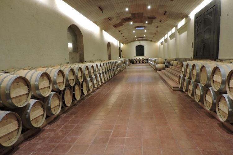 vinicola-concha-y-toro-adega
