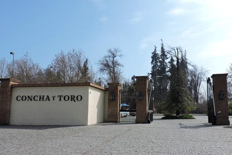 vinicola-concha-y-toro-entrada