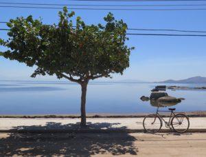 ilha-de-paqueta-rio-de-janeiro