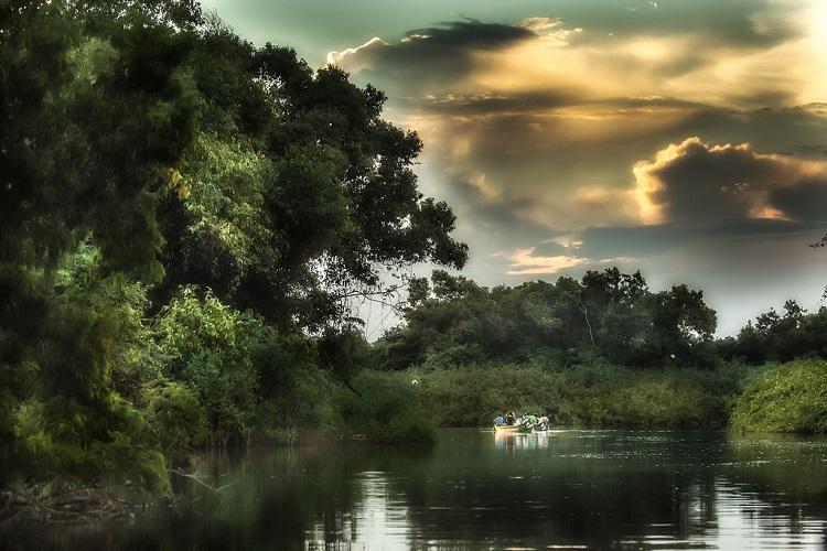 patrimonios-mundiais-da-humanidade-brasil-amazonia
