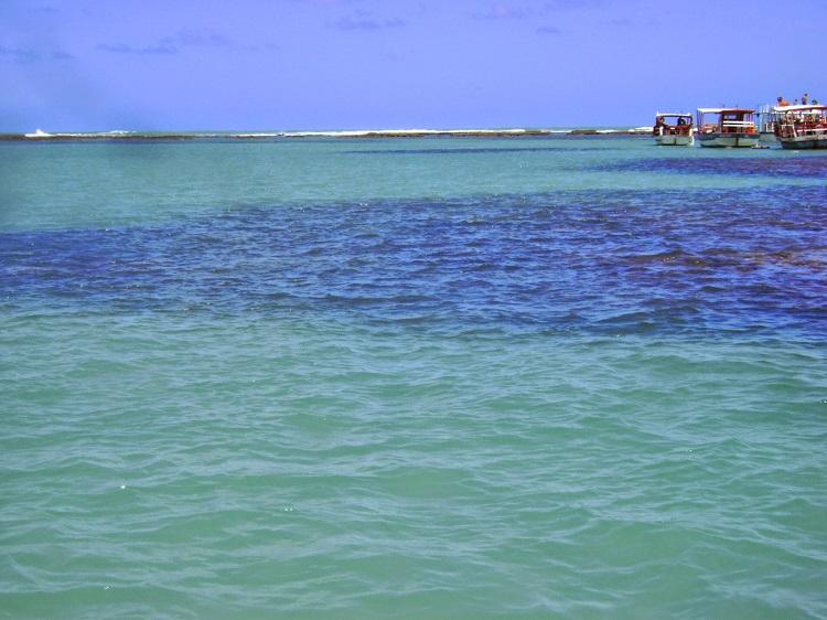 piscinas-naturais-de-maragogi-corais