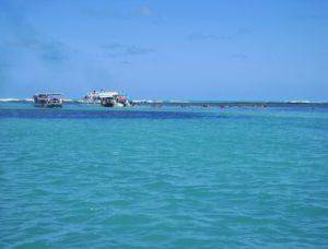 piscinas-naturais-de-maragogi-mar
