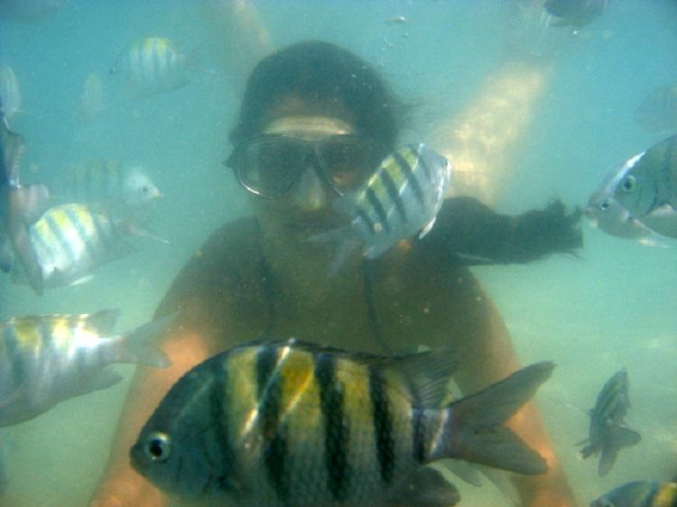 piscinas-naturais-de-maragogi-mergulho