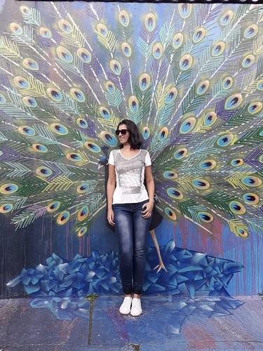 melhores-grafites-em-sao-paulo-pavao