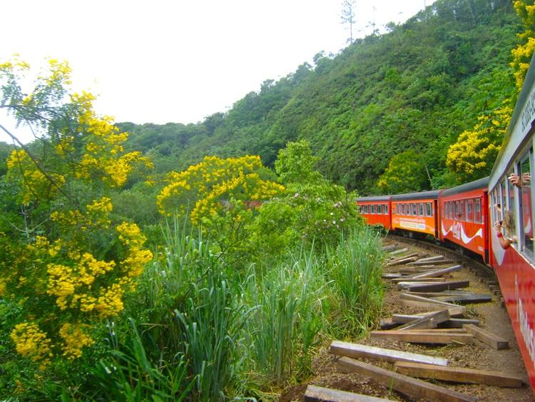 viagem-de-trem-no-brasil-curitiba-morretes