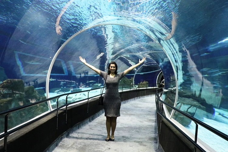 o-que-fazer-no-rio-de-janeiro-aquario-tunell