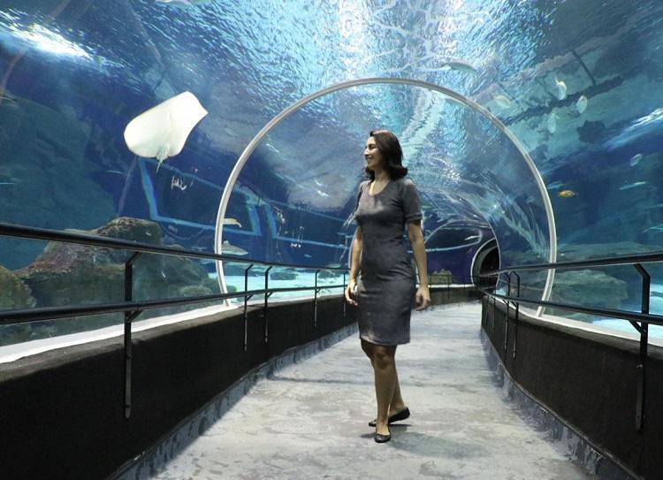como-visitar-aquario-rio-de-janeiro-tunel
