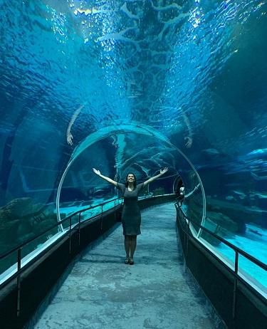 como-visitar-aquario-rio-de-janeiro-tunel2