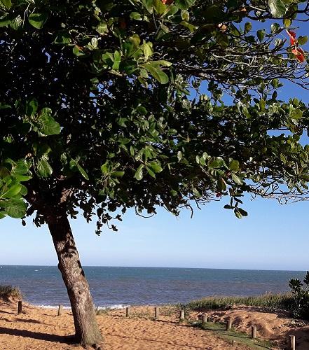 o-que-fazer-em-aracruz-es-barra-do-sahy-praia1