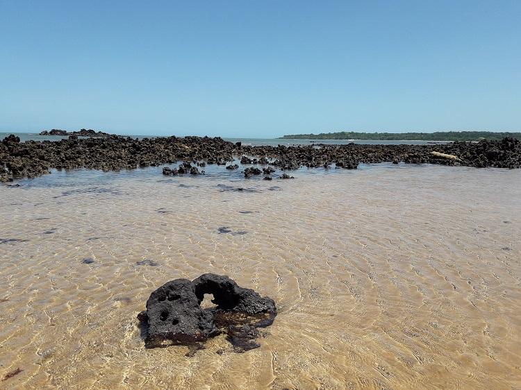 o-que-fazer-em-aracruz-es-coqueiral-praia3